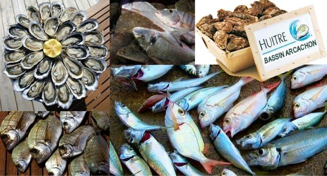 Poissons et fruits-de-mer Arcachon