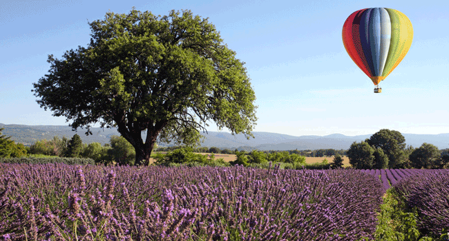 Montgolfière-Roussillon