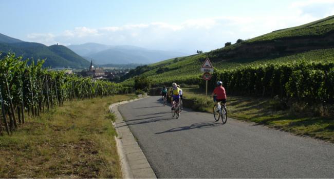 La Route des Vins d'Alsace en camping-car_Vélo_Barr