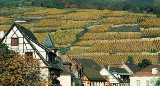 La Route des Vins d'Alsace en camping-car_Ribeauvillé