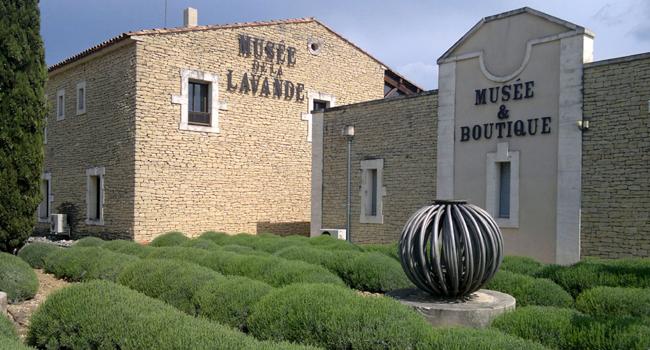 musée-de-la-lavande