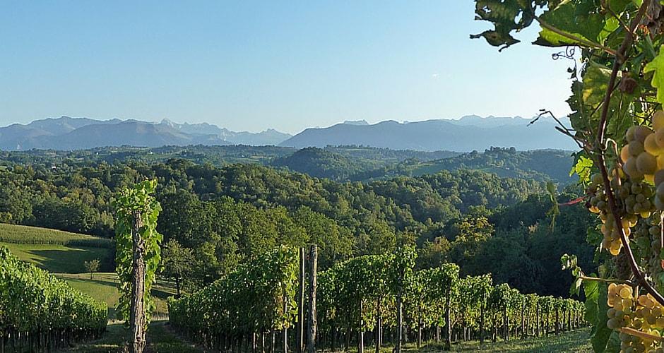 La route des vins du Jurançon en camping-car
