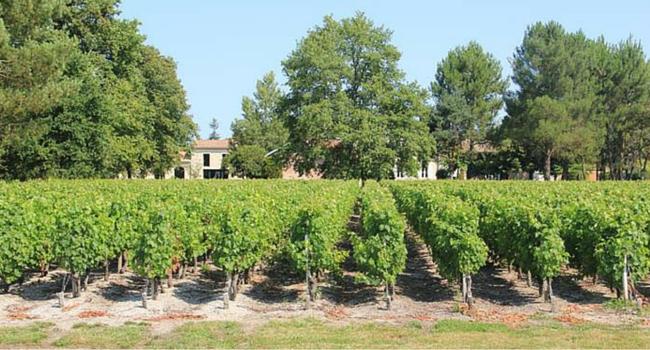 La route des vins du Médoc en camping-car_Château_Baudan