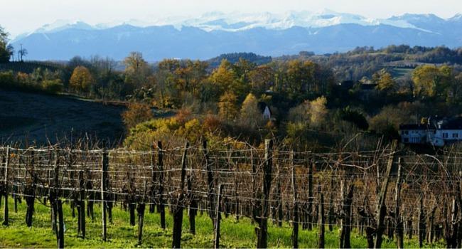 La route des vins du Jurançon en camping-car_Château-Lapeyre