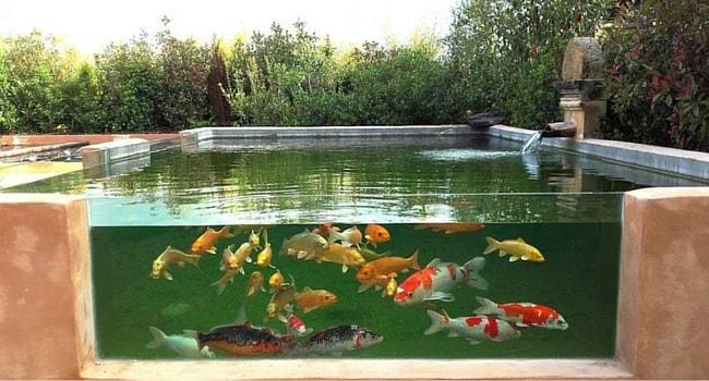 jardin-eau-perigord