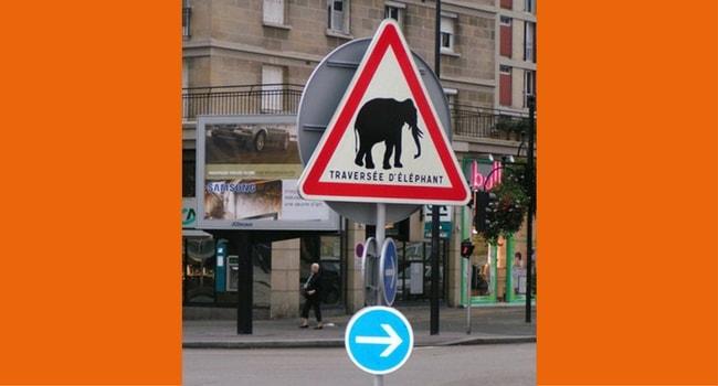 Panneaux routiers insolites 4