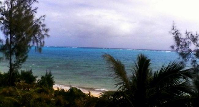 location-jardin-polynesie-camping