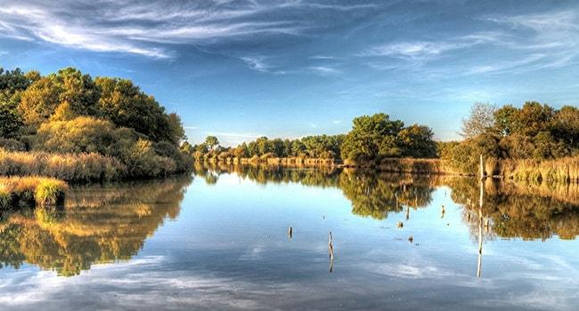 Parc naturel regional de la Brenne