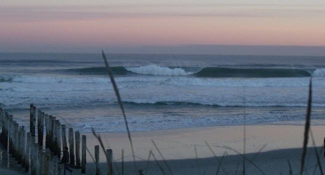 Gaia Surf