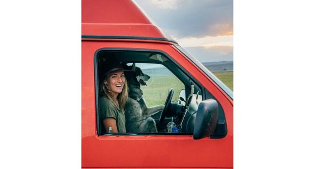 Animaux de compagnie en camping-car_Chien-conducteur