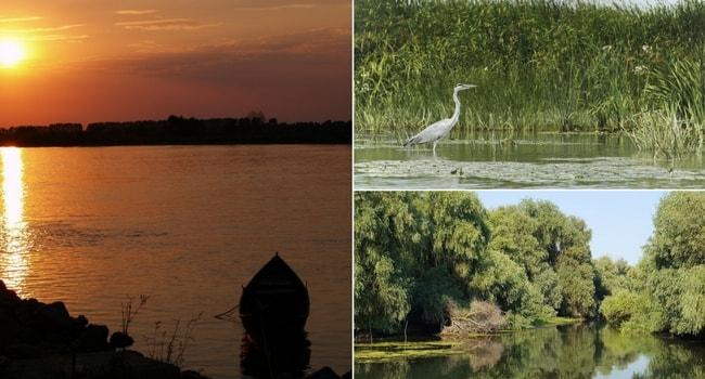 En route vers la Roumanie en camping-car_Delta du Danube