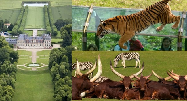 La tournée des zoos en camping-car_Zoo de Thoiry