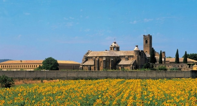 Monasterio de la Oliviabardenas