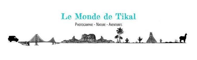 Le Monde de Tikal_Bandeau