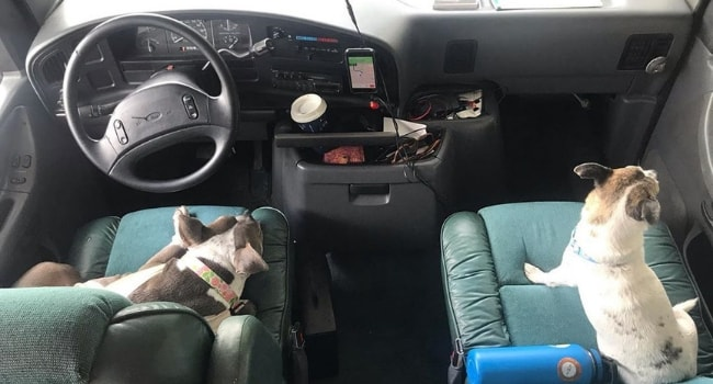 Vos animaux de compagnie en camping-car_Coordonnées