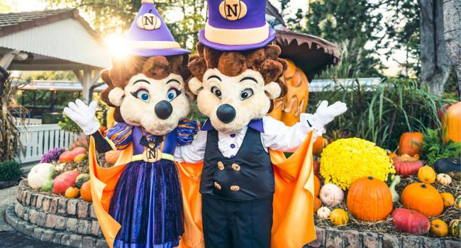 halloween-parc-attraction-Nigloland