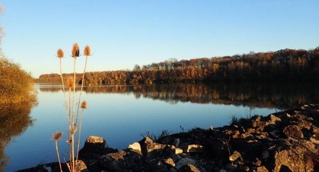ou-partir-en-juin-en-france-parc -naturel-regional-de-la-foret-d-orient-lac