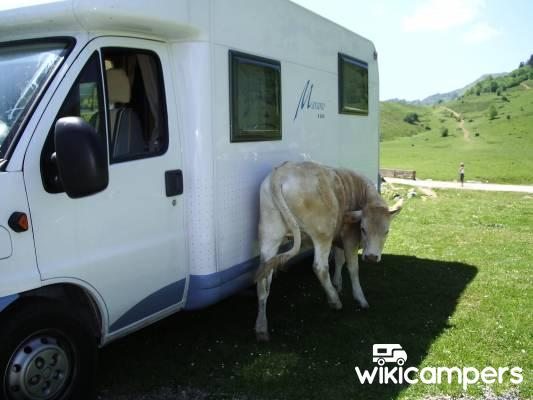 location camping car libourne fiat burstner marano t590. Black Bedroom Furniture Sets. Home Design Ideas
